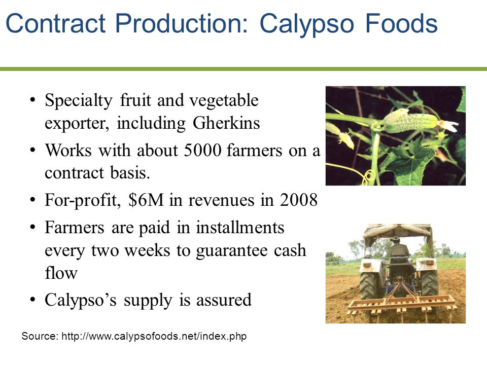 Contract Production: Calypso Foods Specialty fruit and vegetable exporter, including Gherkins Works with about 5000 farmers on a contract basis.