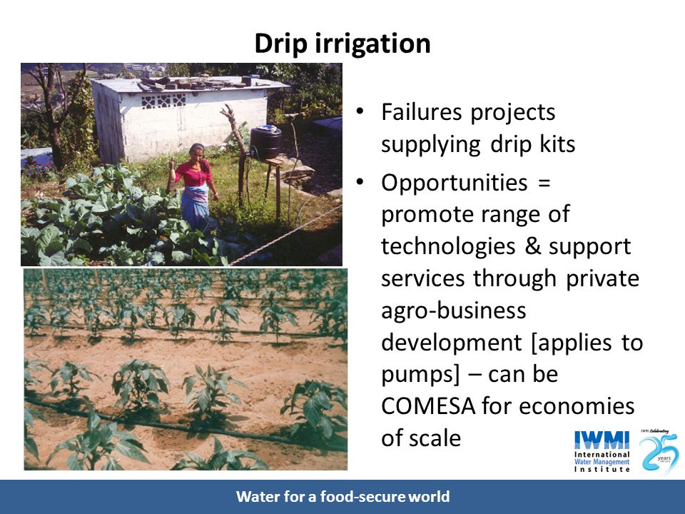 Water for a food-secure world Drip irrigation Failures projects supplying drip kits Opportunities = promote range of technologies & support services t