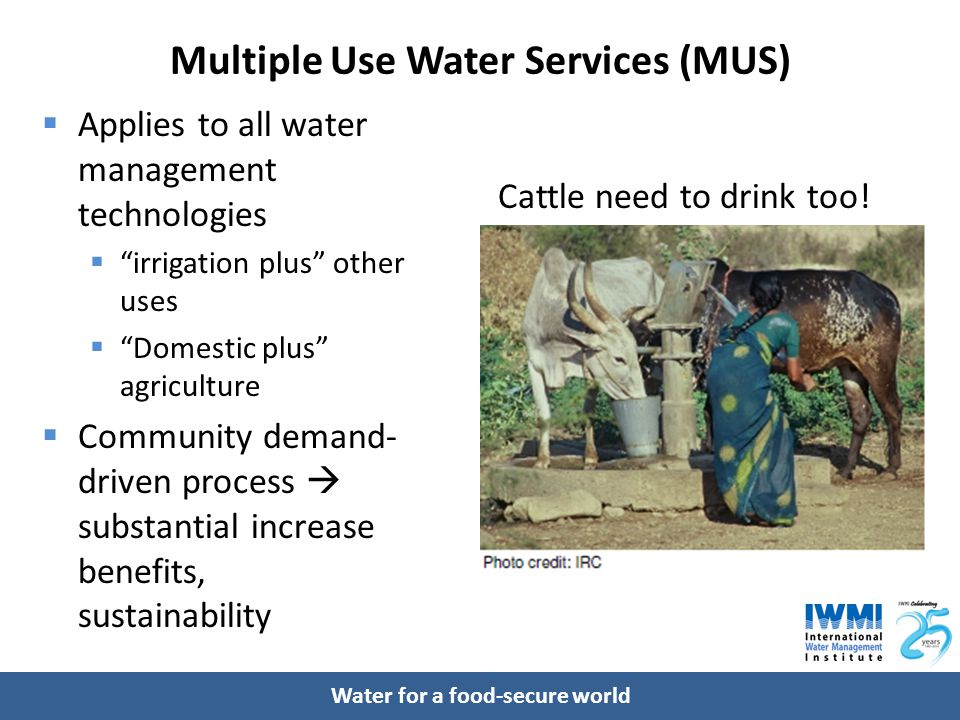 """Water for a food-secure world Multiple Use Water Services (MUS)  Applies to all water management technologies  """"irrigation plus"""" other uses  """"Domes"""