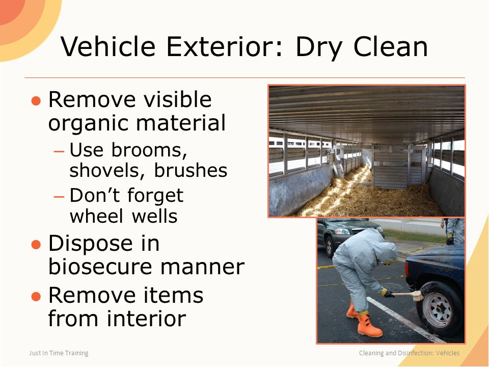Vehicle Exterior: Dry Clean ●Remove visible organic material – Use brooms, shovels, brushes – Don't forget wheel wells ●Dispose in biosecure manner ●Remove items from interior Just In Time Training Cleaning and Disinfection: Vehicles
