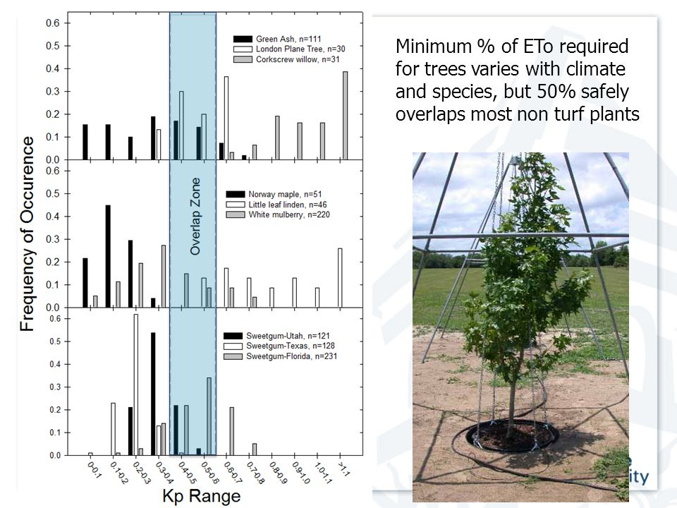 Minimum % of ETo required for trees varies with climate and species, but 50% safely overlaps most non turf plants