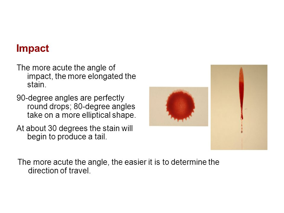 Impact The more acute the angle of impact, the more elongated the stain. 90-degree angles are perfectly round drops; 80-degree angles take on a more e