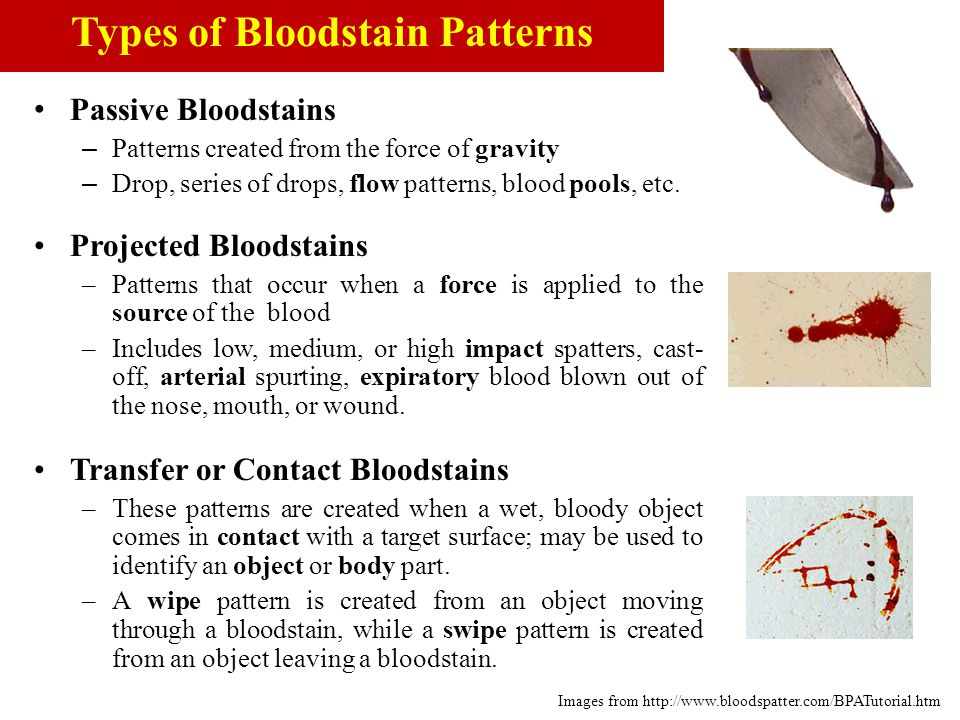 Passive Bloodstains – Patterns created from the force of gravity – Drop, series of drops, flow patterns, blood pools, etc. Projected Bloodstains –Patt