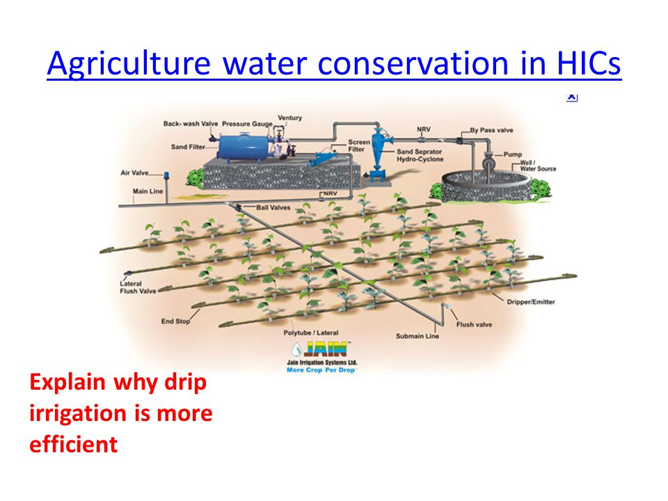 Agriculture water conservation in HICs Explain why drip irrigation is more efficient