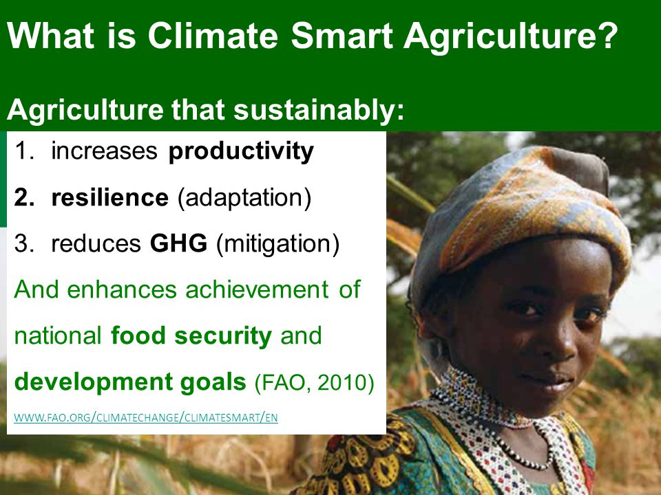 1.increases productivity 2.resilience (adaptation) 3.reduces GHG (mitigation) And enhances achievement of national food security and development goals (FAO, 2010) WWW.