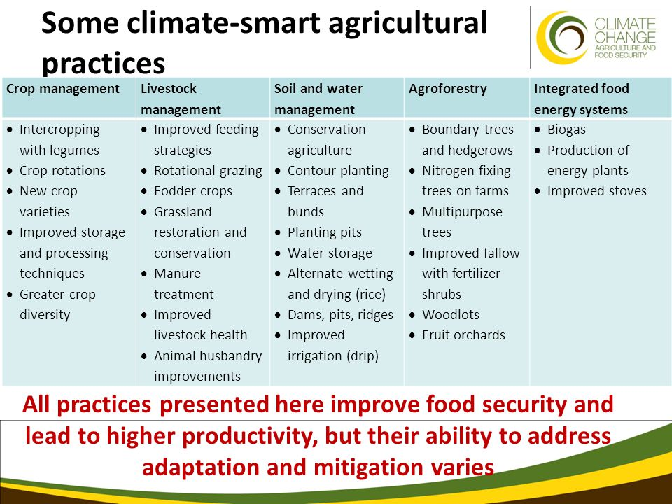 Some climate-smart agricultural practices Crop management Livestock management Soil and water management Agroforestry Integrated food energy systems  Intercropping with legumes  Crop rotations  New crop varieties  Improved storage and processing techniques  Greater crop diversity  Improved feeding strategies  Rotational grazing  Fodder crops  Grassland restoration and conservation  Manure treatment  Improved livestock health  Animal husbandry improvements  Conservation agriculture  Contour planting  Terraces and bunds  Planting pits  Water storage  Alternate wetting and drying (rice)  Dams, pits, ridges  Improved irrigation (drip)  Boundary trees and hedgerows  Nitrogen-fixing trees on farms  Multipurpose trees  Improved fallow with fertilizer shrubs  Woodlots  Fruit orchards  Biogas  Production of energy plants  Improved stoves All practices presented here improve food security and lead to higher productivity, but their ability to address adaptation and mitigation varies