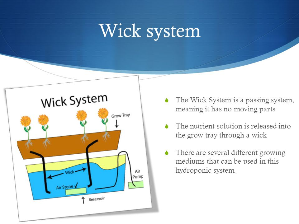 Wick system  The Wick System is a passing system, meaning it has no moving parts  The nutrient solution is released into the grow tray through a wick  There are several different growing mediums that can be used in this hydroponic system