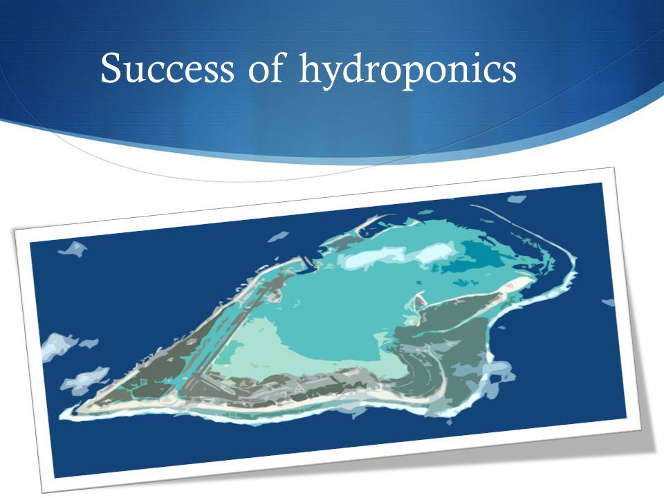 Success of hydroponics