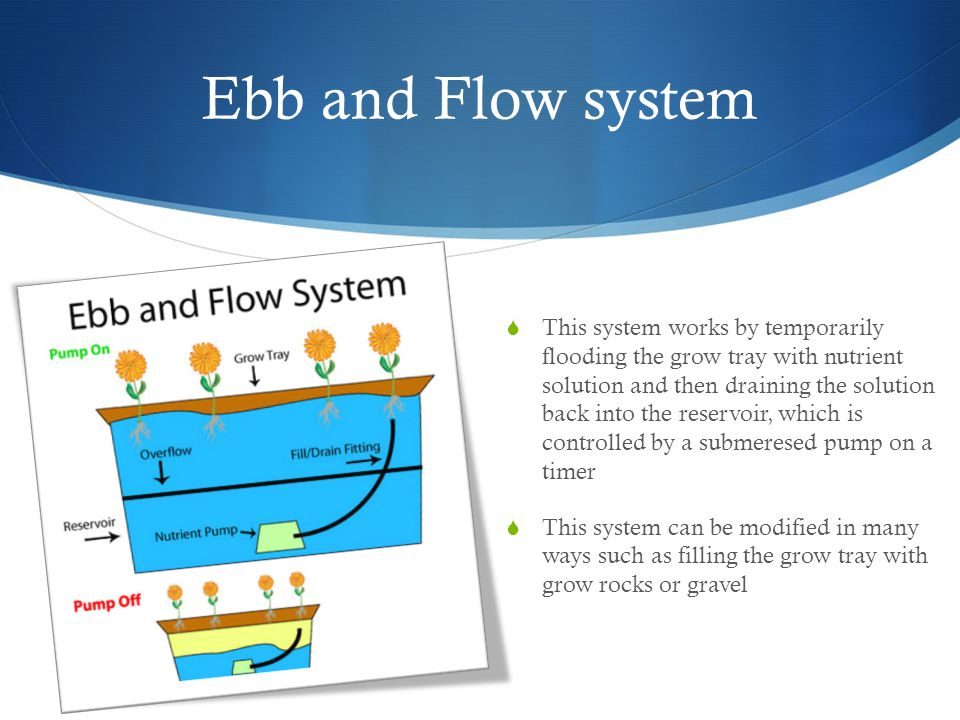 Ebb and Flow system  This system works by temporarily flooding the grow tray with nutrient solution and then draining the solution back into the reservoir, which is controlled by a submeresed pump on a timer  This system can be modified in many ways such as filling the grow tray with grow rocks or gravel