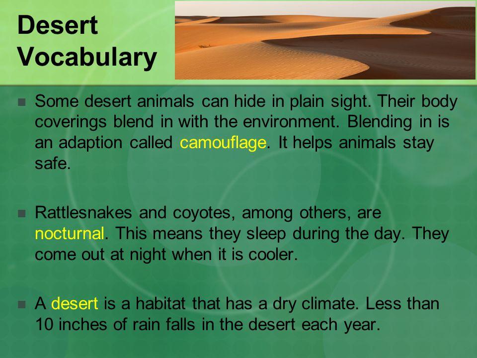 Desert Vocabulary Some desert animals can hide in plain sight.