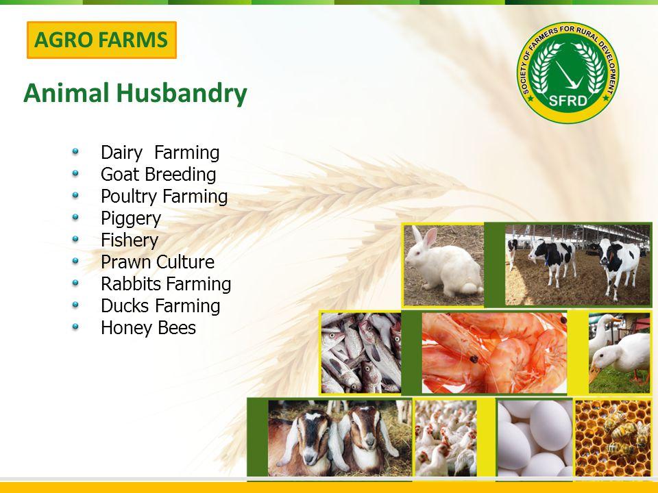 AGRO FARMS Animal Husbandry Dairy Farming Goat Breeding Poultry Farming Piggery Fishery Prawn Culture Rabbits Farming Ducks Farming Honey Bees