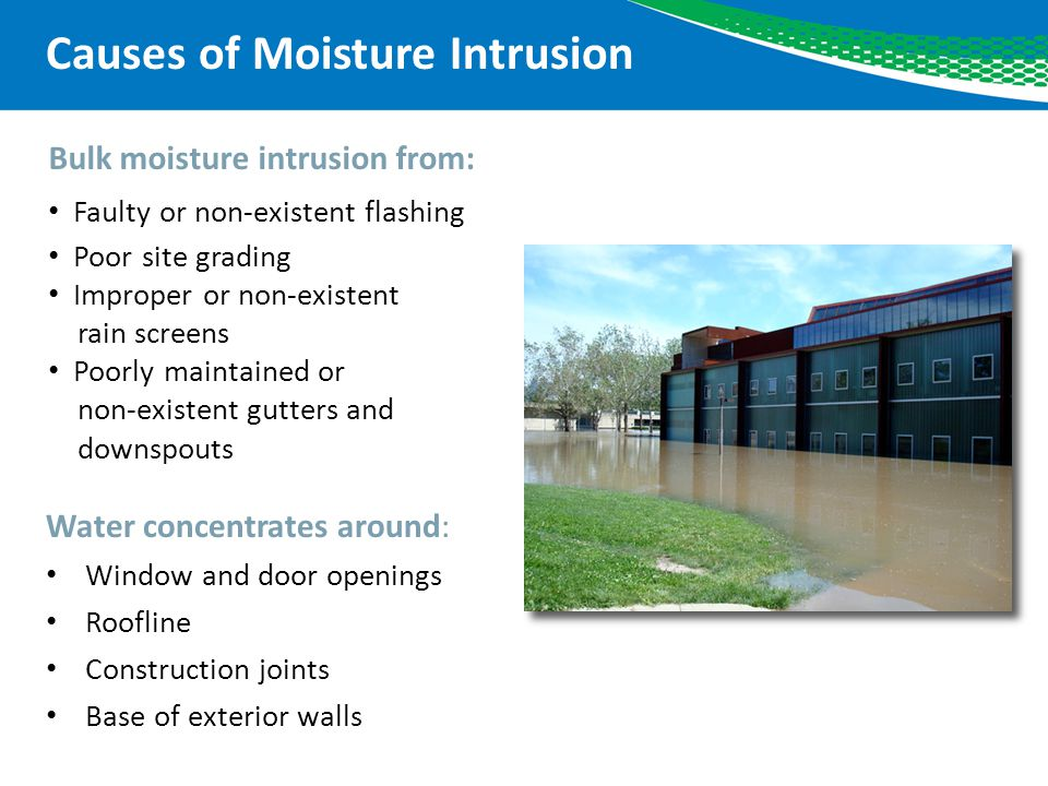 Effects of Moisture Intrusion Moisture related problems Structural wood decay High indoor humidity Condensation Expanding soil Metal corrosion Ice dams Insect infestation Mold growth Structural Wood Decay Ice Dam Insect Infestation