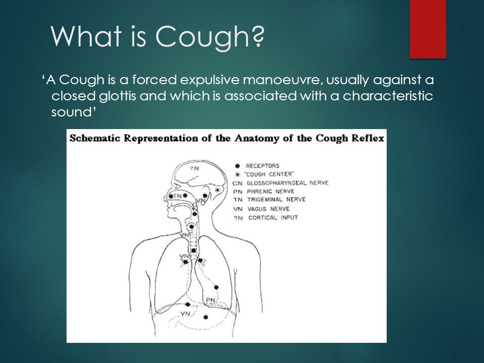 Sub-acute Cough 3-8 weeks Likely Diagnoses  Post infectious  Bacterial Sinusitis  Asthma  Start of Chronic Cough  Don't want to miss lung cancer ACTIONS Examine Chest Chest X-Ray if signs or smoker Measure of airflow obstruction i.e.
