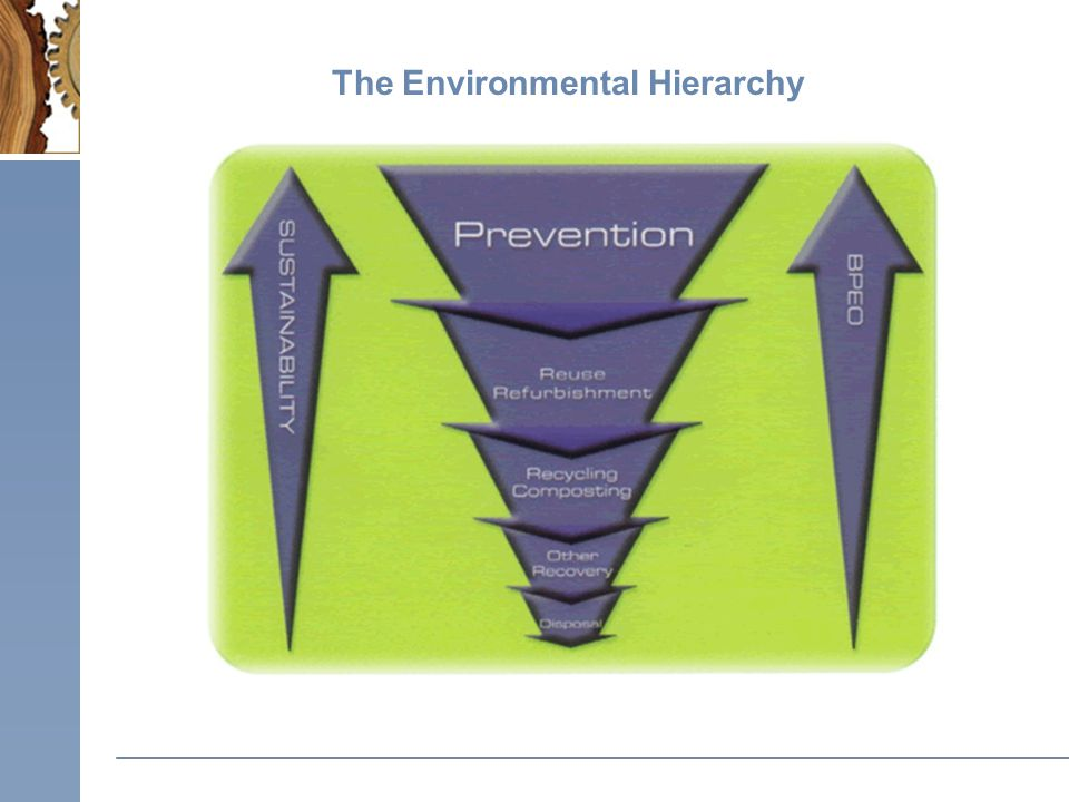 The Environmental Hierarchy