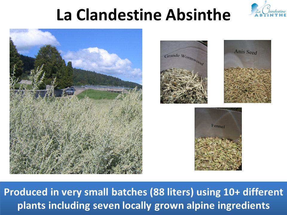 Produced in very small batches (88 liters) using 10+ different plants including seven locally grown alpine ingredients La Clandestine Absinthe