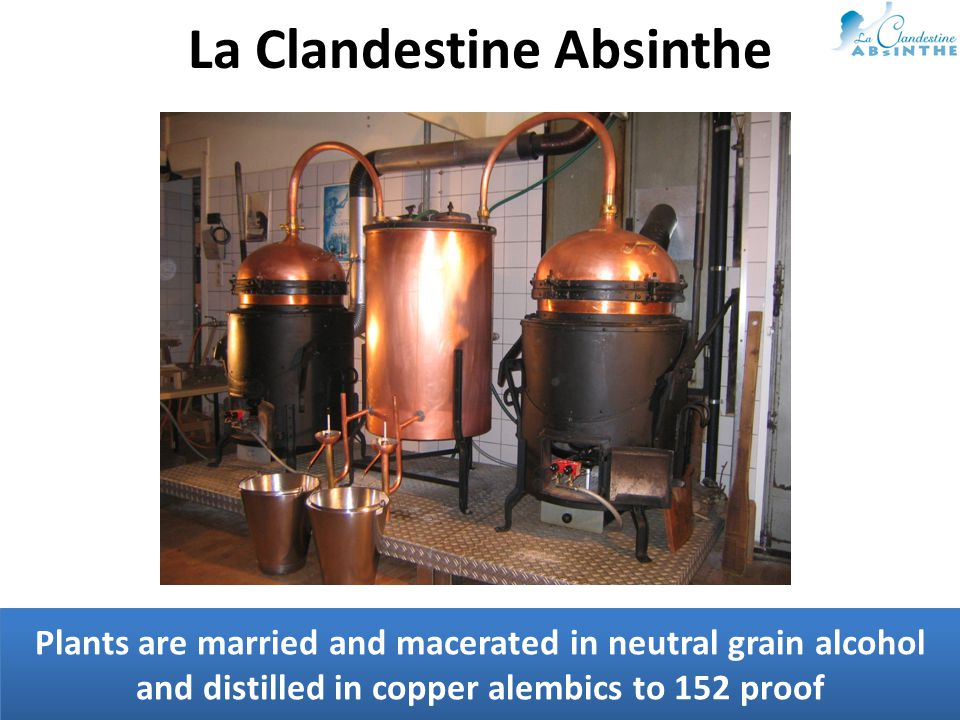 Plants are married and macerated in neutral grain alcohol and distilled in copper alembics to 152 proof La Clandestine Absinthe