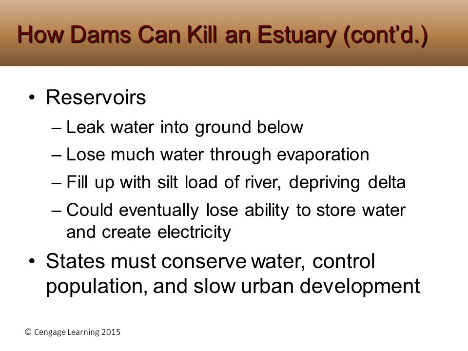 © Cengage Learning 2015 Reservoirs –Leak water into ground below –Lose much water through evaporation –Fill up with silt load of river, depriving delta –Could eventually lose ability to store water and create electricity States must conserve water, control population, and slow urban development How Dams Can Kill an Estuary (cont'd.)