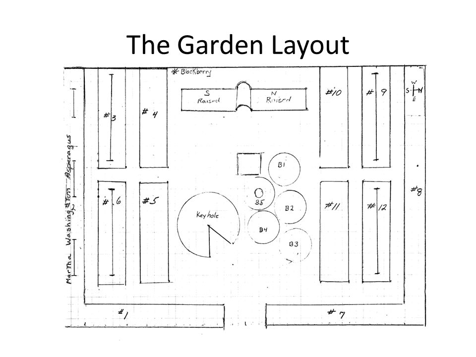 The Garden Layout