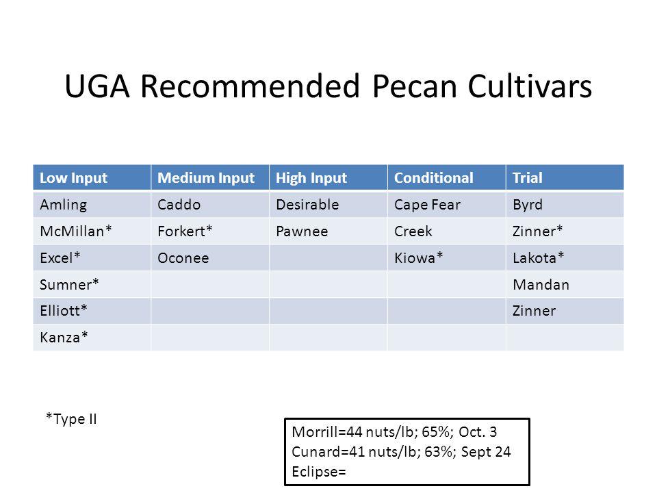 UGA Recommended Pecan Cultivars Low InputMedium InputHigh InputConditionalTrial AmlingCaddoDesirableCape FearByrd McMillan*Forkert*PawneeCreekZinner* Excel*OconeeKiowa*Lakota* Sumner*Mandan Elliott*Zinner Kanza* *Type II Morrill=44 nuts/lb; 65%; Oct.