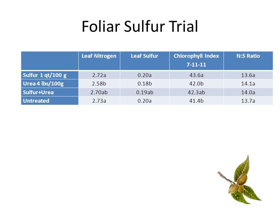 Foliar Sulfur Trial Leaf NitrogenLeaf Sulfur Chlorophyll Index 7-11-11 N:S Ratio Sulfur 1 qt/100 g2.72a0.20a43.6a13.6a Urea 4 lbs/100g2.58b0.18b42.0b14.1a Sulfur+Urea2.70ab0.19ab42.3ab14.0a Untreated2.73a0.20a41.4b13.7a