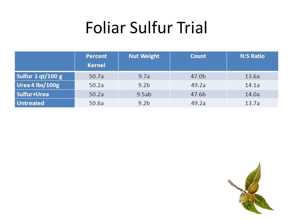 Foliar Sulfur Trial Percent Kernel Nut WeightCountN:S Ratio Sulfur 1 qt/100 g50.7a9.7a47.0b13.6a Urea 4 lbs/100g50.2a9.2b49.2a14.1a Sulfur+Urea50.2a9.5ab47.6b14.0a Untreated50.6a9.2b49.2a13.7a