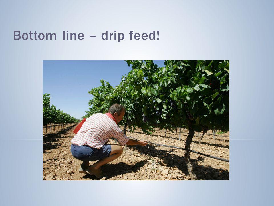Bottom line – drip feed!