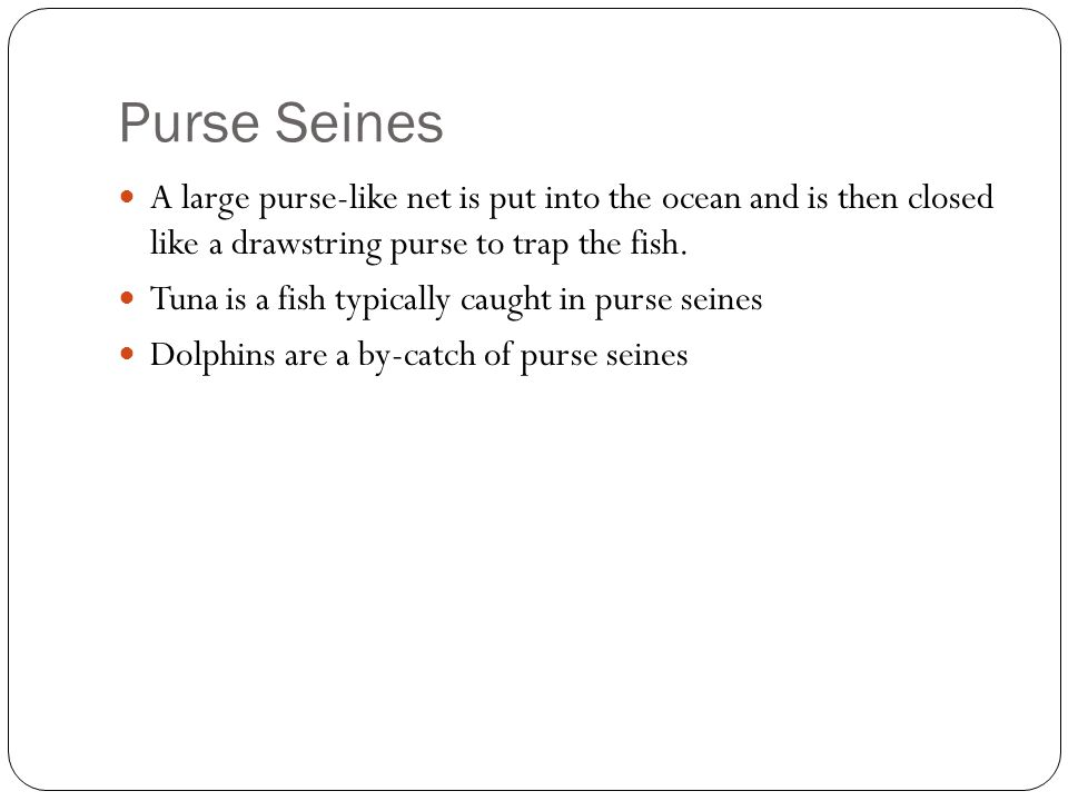 Purse Seines A large purse-like net is put into the ocean and is then closed like a drawstring purse to trap the fish.