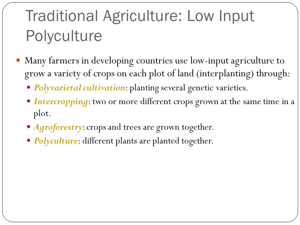 Traditional Agriculture: Low Input Polyculture Many farmers in developing countries use low-input agriculture to grow a variety of crops on each plot of land (interplanting) through: Polyvarietal cultivation: planting several genetic varieties.