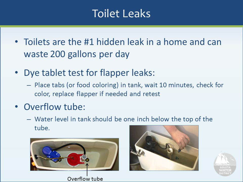 Toilet Leaks Toilets are the #1 hidden leak in a home and can waste 200 gallons per day Dye tablet test for flapper leaks: – Place tabs (or food color