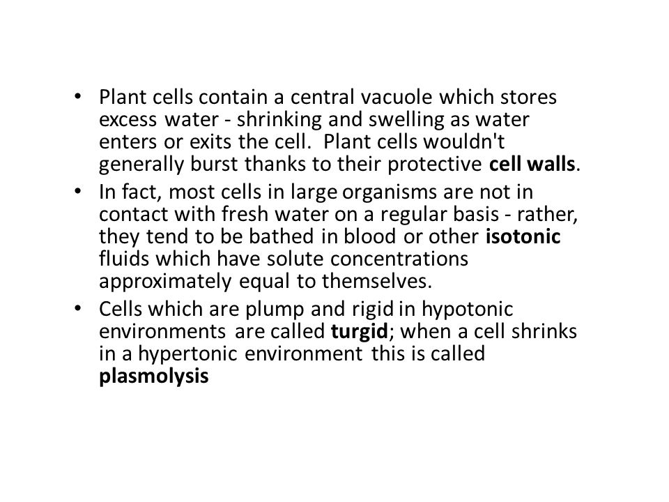 Plant cells contain a central vacuole which stores excess water - shrinking and swelling as water enters or exits the cell. Plant cells wouldn't gener