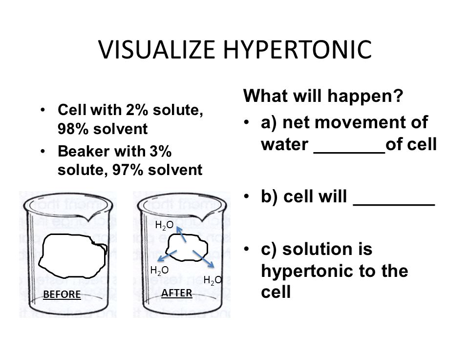 VISUALIZE HYPERTONIC Cell with 2% solute, 98% solvent Beaker with 3% solute, 97% solvent What will happen? a) net movement of water _______of cell b)