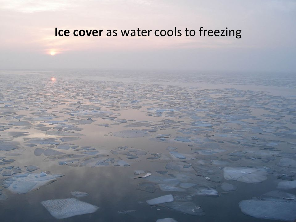 Ice cover as water cools to freezing