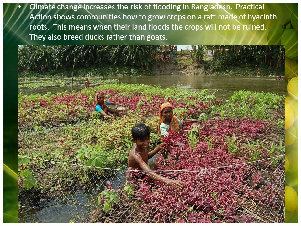 Climate change increases the risk of flooding in Bangladesh.