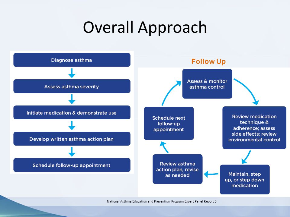 Overall Approach National Asthma Education and Prevention Program Expert Panel Report 3 Follow Up