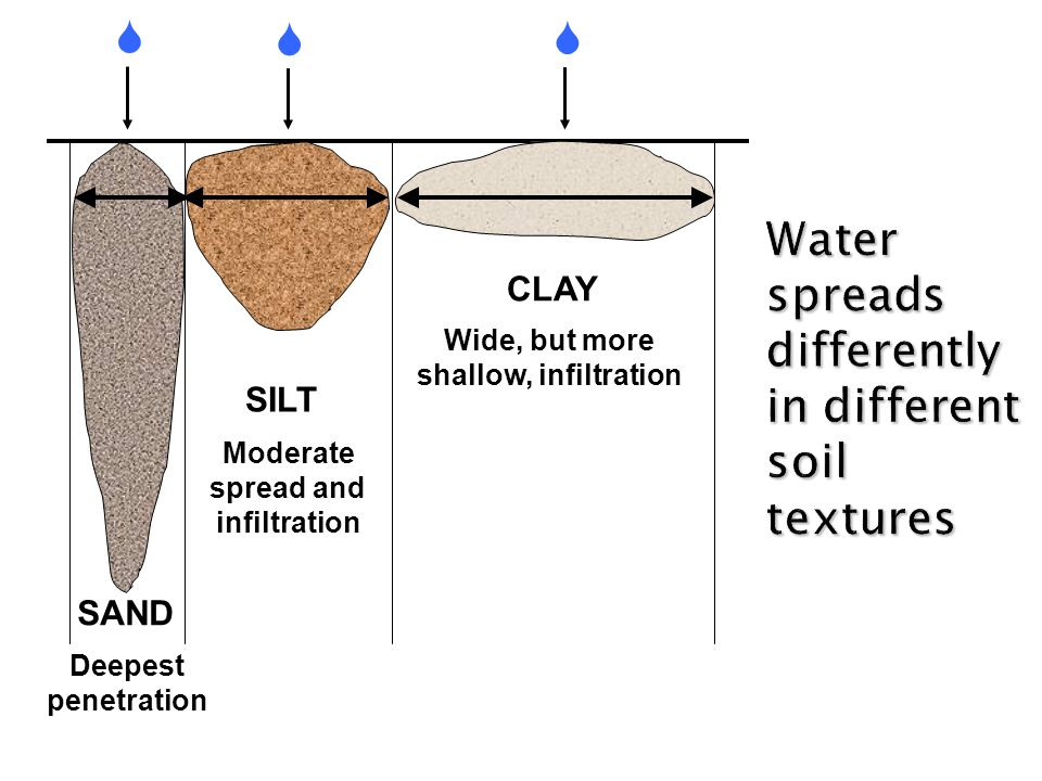 Water spreads differently in different soil textures Deepest penetration Moderate spread and infiltration Wide, but more shallow, infiltration    CLAY SILT SAND