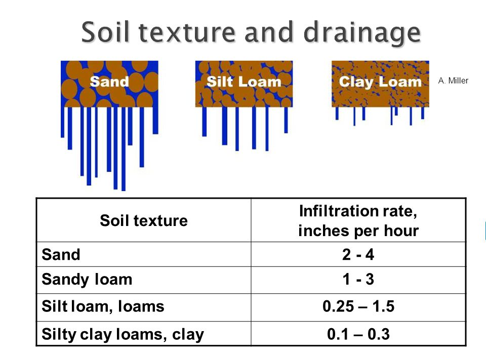 Soil texture Infiltration rate, inches per hour Sand2 - 4 Sandy loam1 - 3 Silt loam, loams0.25 – 1.5 Silty clay loams, clay0.1 – 0.3 A.