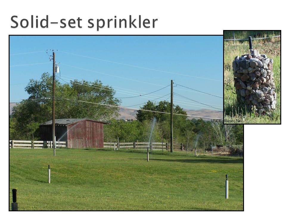 Solid-set sprinkler UNCE, Reno, Nev.