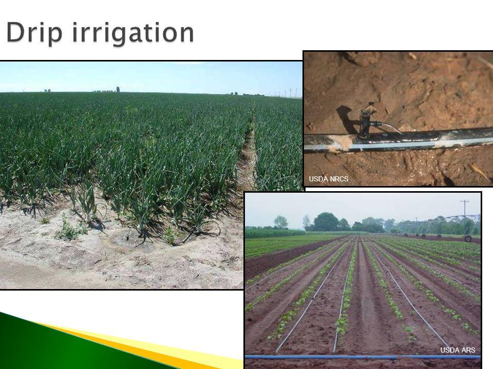 Drip irrigation USDA ARS USDA NRCS