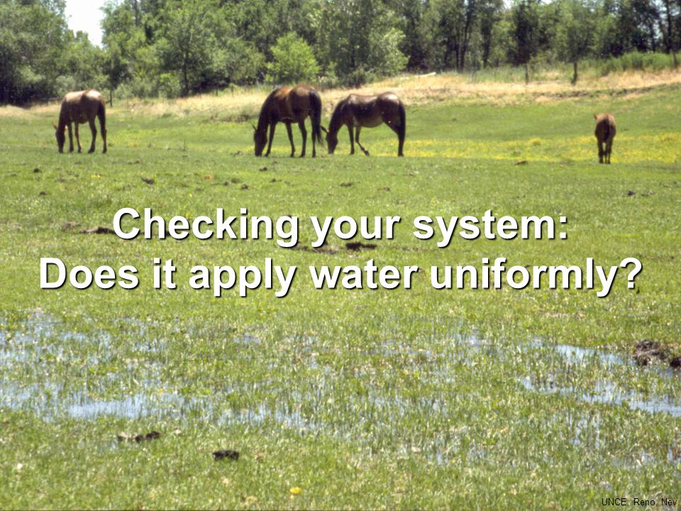 Checking your system: Does it apply water uniformly UNCE, Reno, Nev.