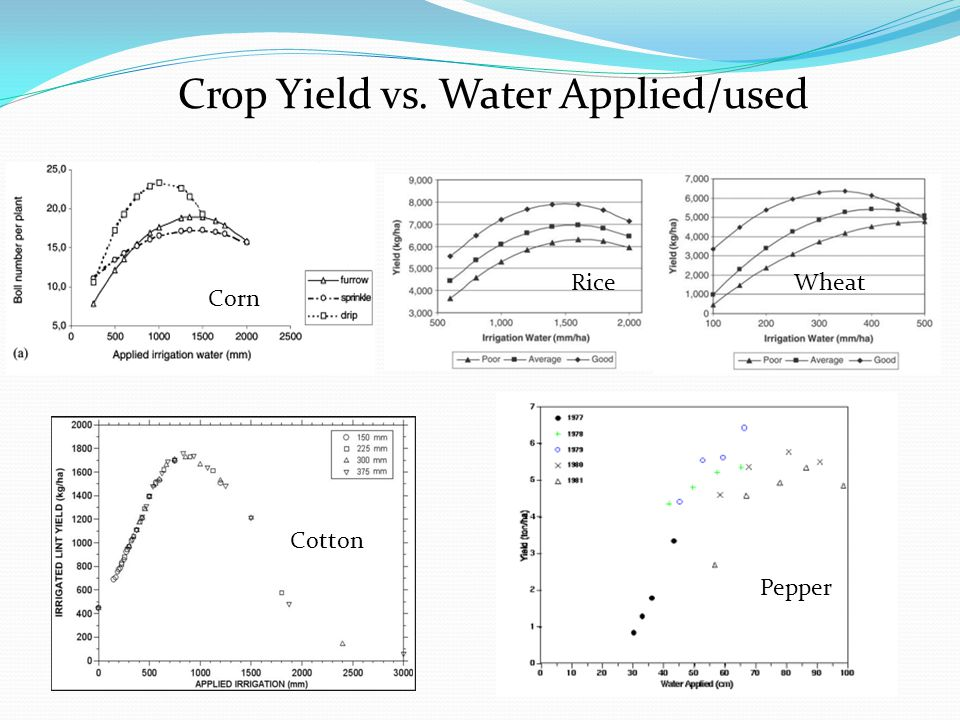 Cotton Pepper Corn Crop Yield vs. Water Applied/used WheatRice
