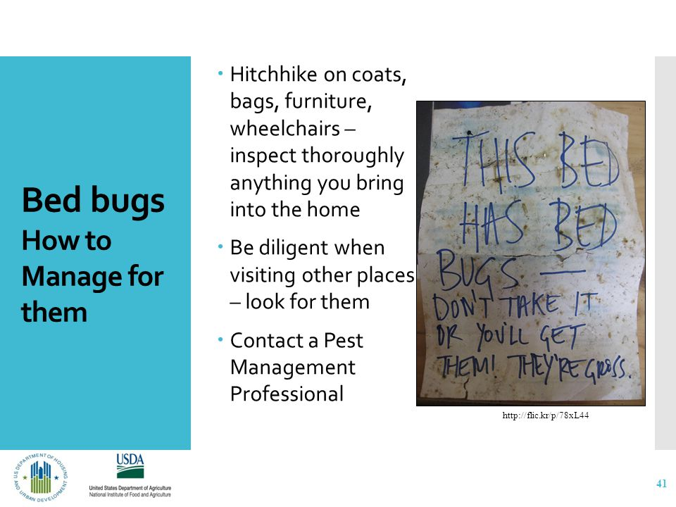Bed bugs How to Manage for them  Hitchhike on coats, bags, furniture, wheelchairs – inspect thoroughly anything you bring into the home  Be diligent when visiting other places – look for them  Contact a Pest Management Professional 41 http://flic.kr/p/78xL44
