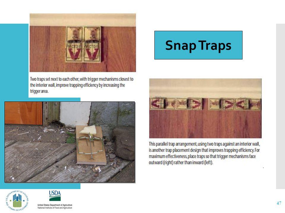 Traps 47 Snap Traps