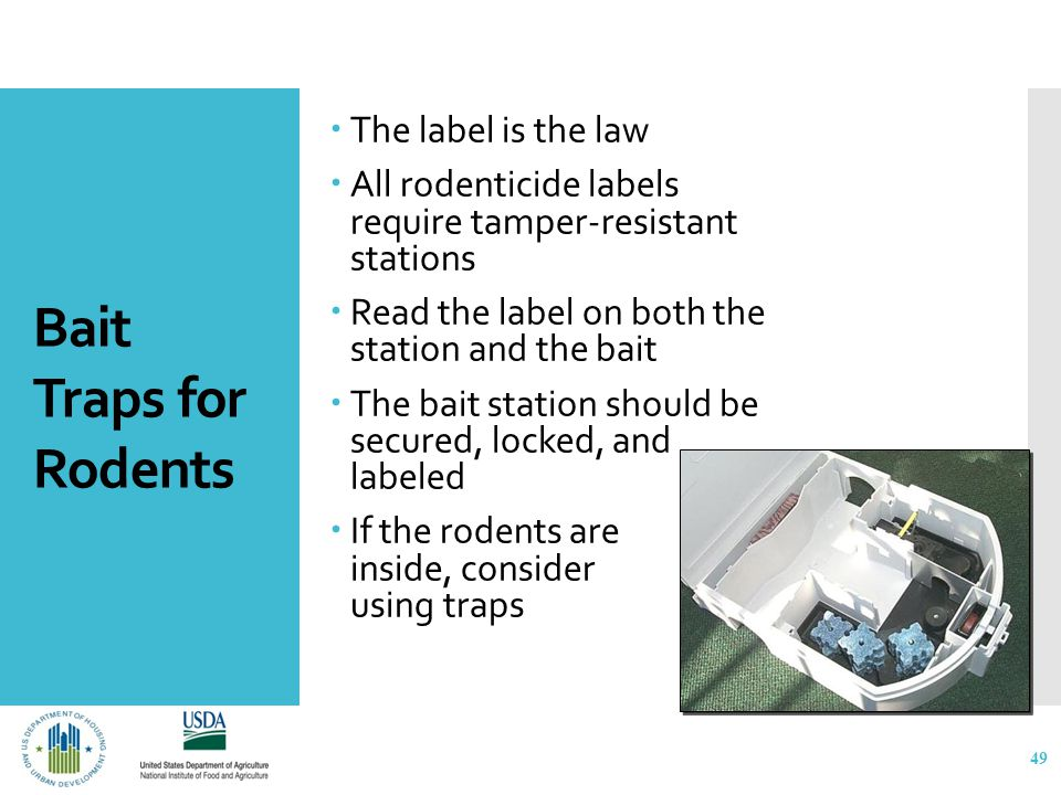 Bait Traps for Rodents  The label is the law  All rodenticide labels require tamper-resistant stations  Read the label on both the station and the bait  The bait station should be secured, locked, and labeled  If the rodents are inside, consider using traps 49