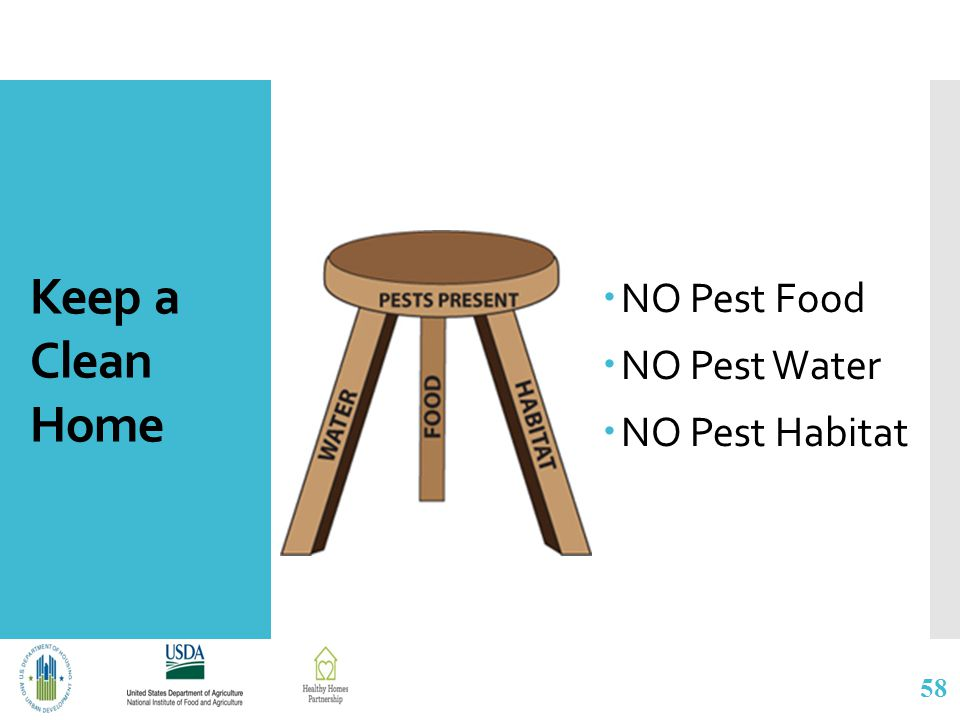 Keep a Clean Home  NO Pest Food  NO Pest Water  NO Pest Habitat 58