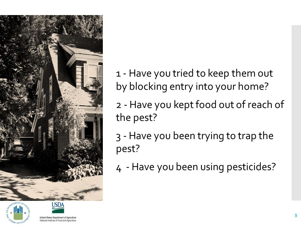 How are your managing or controlling the pests.