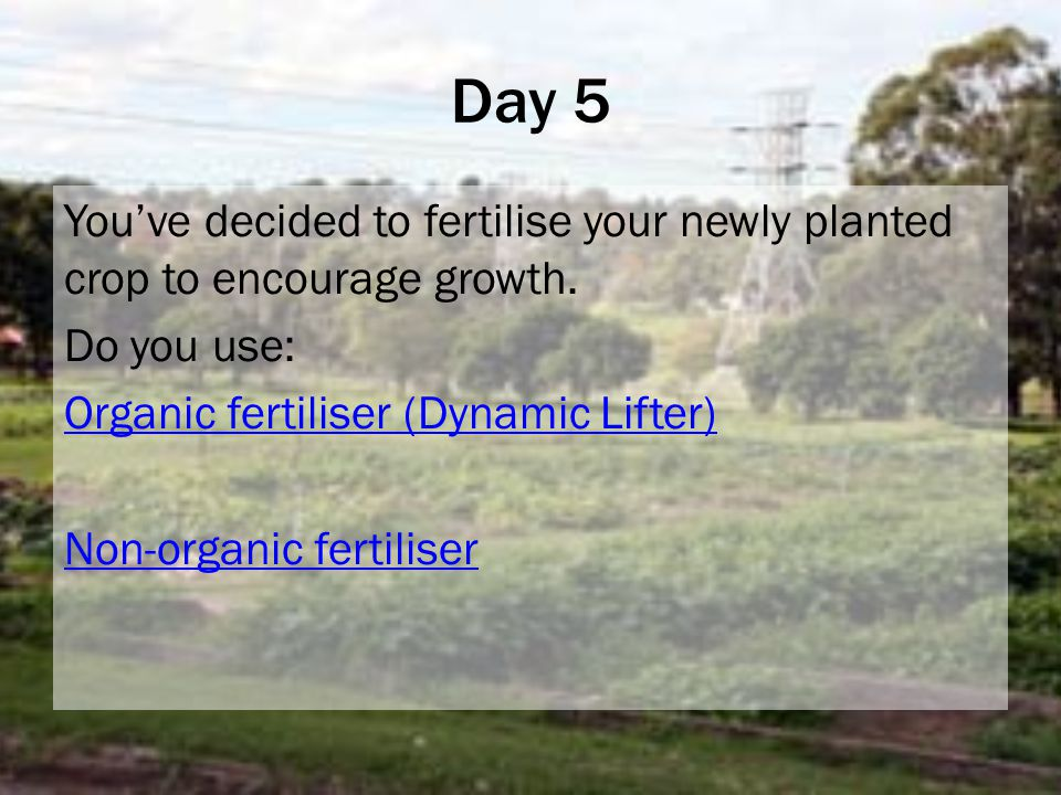 Day 5 You've decided to fertilise your newly planted crop to encourage growth.