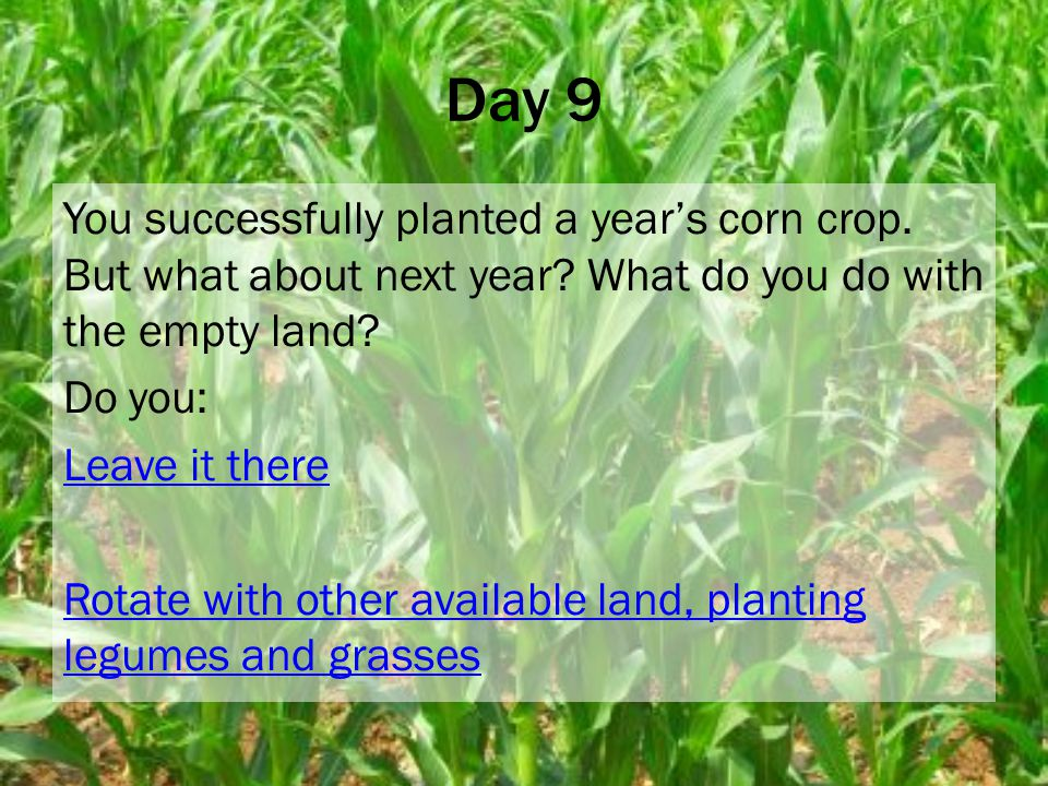 Day 9 You successfully planted a year's corn crop.