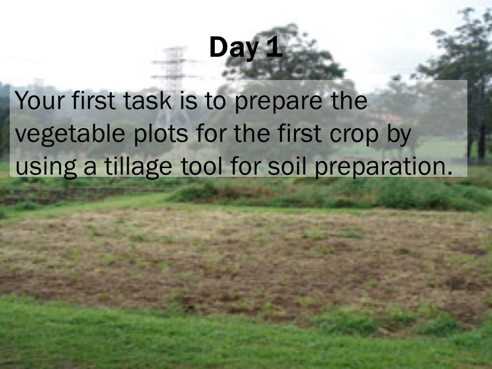 Day 1 Your first task is to prepare the vegetable plots for the first crop by using a tillage tool for soil preparation.