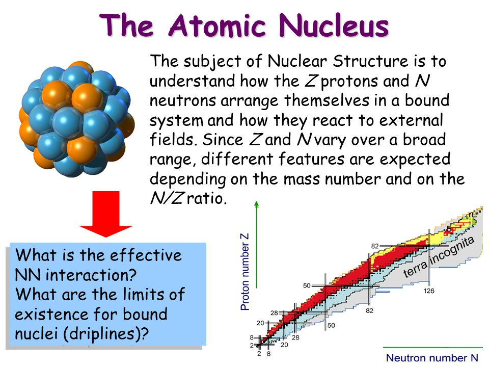 The Shell Model There is a surprising analogy between the description of bound electrons in atoms and bound nucleons in atomic nuclei.