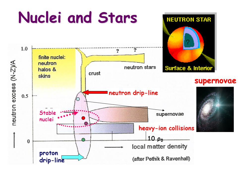 Symmetry Energy: Nuclei and Stars P sym (ρ,δ) = ρ 2 (∂E sym / ∂ ρ ) δ 2 = ρ 0 E sym (ρ o )  u  +1 δ 2 u= ρ/ρ o E sym (ρ) = E sym (ρ o ) u  The symmetry energy determines the dynamics of supernovae explosions and the pressure in neutron stars: Observables (input to the models): Dynamics of heavy-ion collisions at different N/Z ratios Structure of nuclei far from stability: single-particle and collective properties